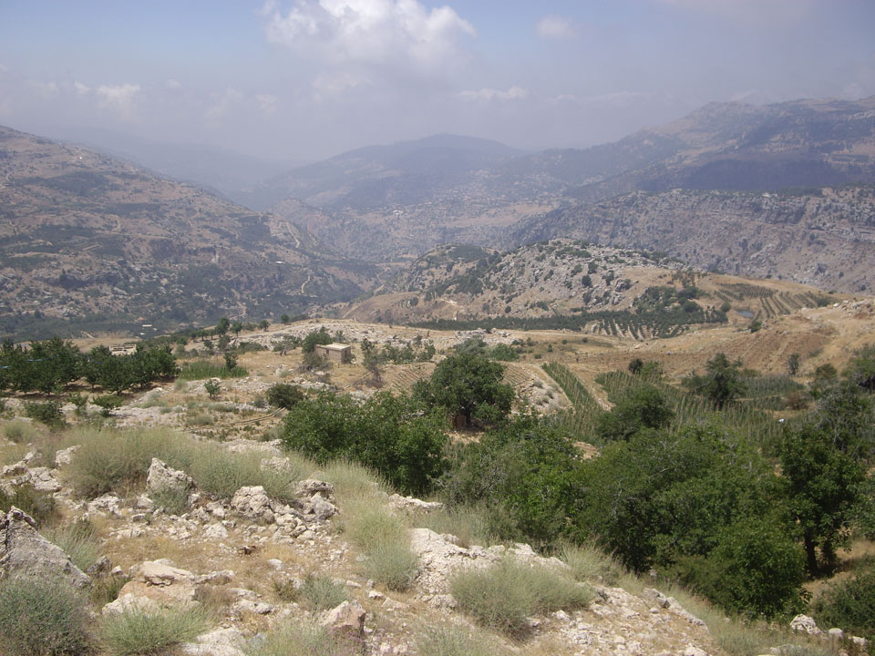 Lebanon & Near East