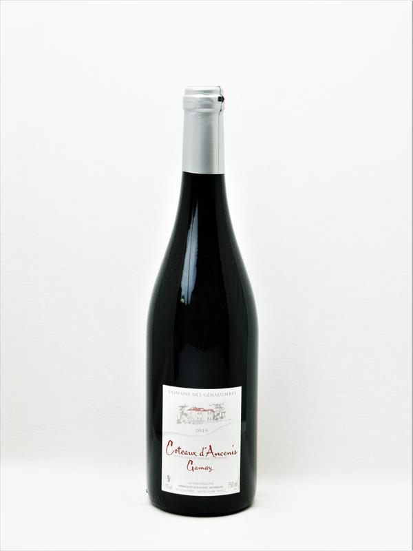 Genaudieres Gamay Coteaux d Ancenis 2020 Image 1