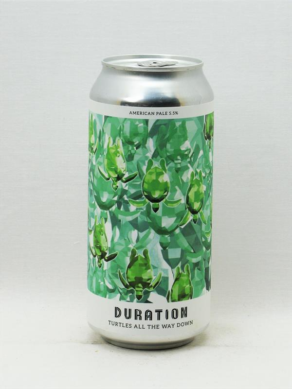 Duration Turtles All The Way Down APA Norfolk 440ml Image 1