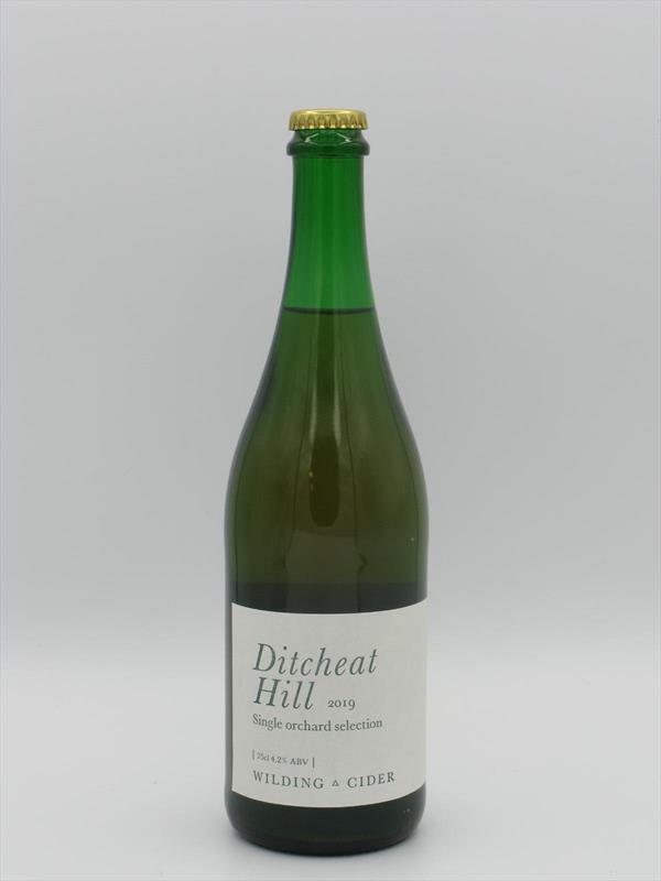 Wilding Cider Ditcheat Hill Single Orchard 2019 4.2% 750ml Somerset Image 1